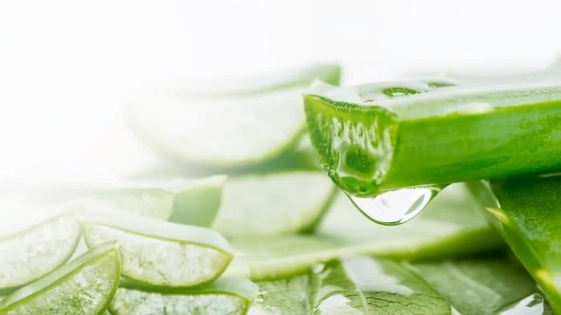 Ngâm nha đam với muối hoặc chanh để loại bỏ độc tố